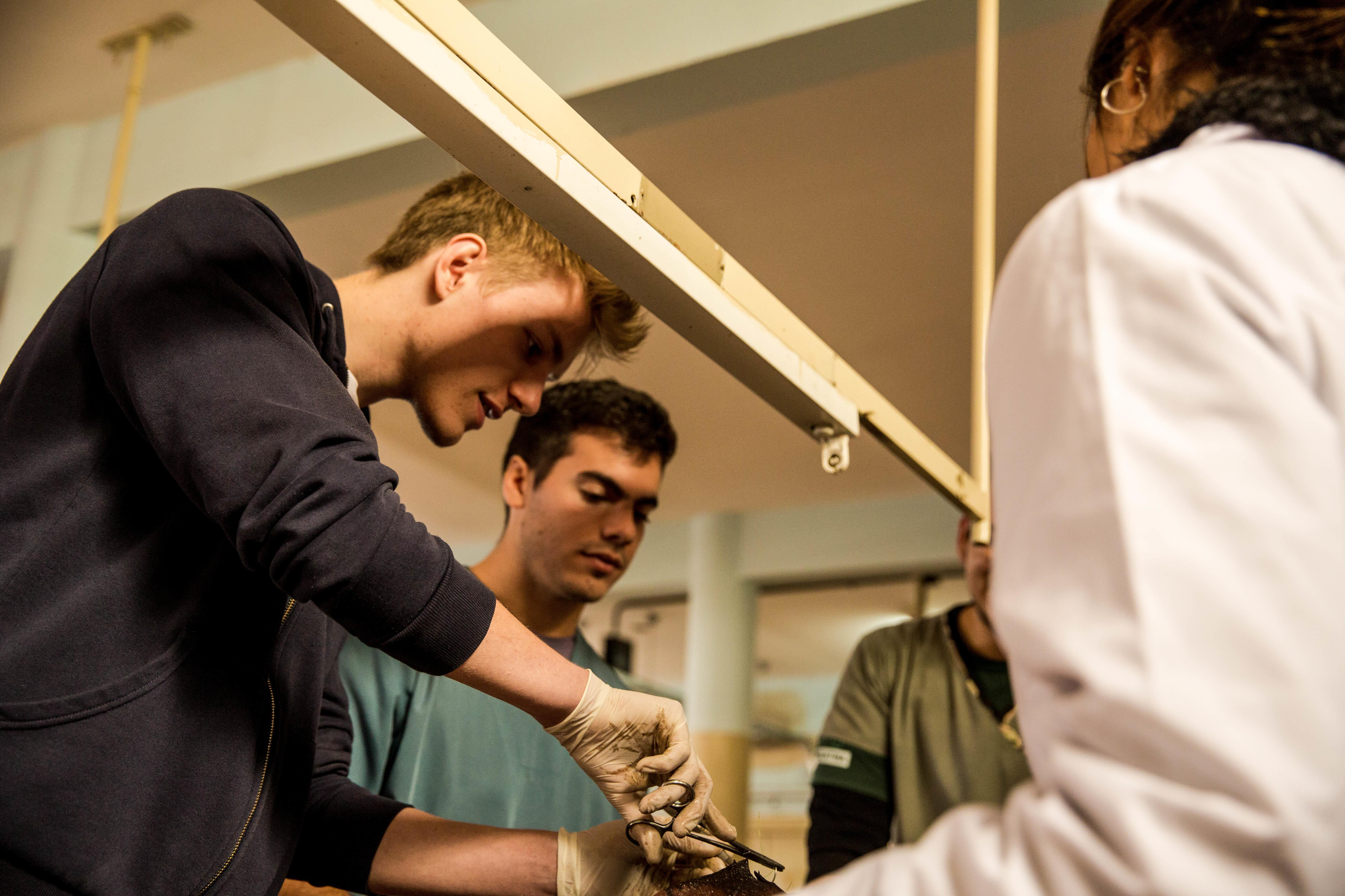 Male Medicine interns learn how to suture on a cadaver at a medical programme during their medical internship in Argentina.
